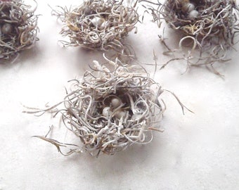Cottage chic - Mini Birds Nests with white eggs - Set of 10 - Craft Supply