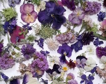 Bulk Dried Flowers, Wedding decor, Dried Petals, Dried Leaves, Craft Supplies, Biodegradable, Flower Girl, Centerpiece, 36 Cups Confetti