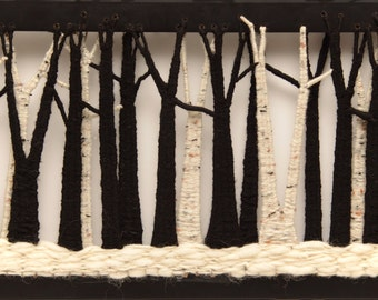 Black and Birch Forest