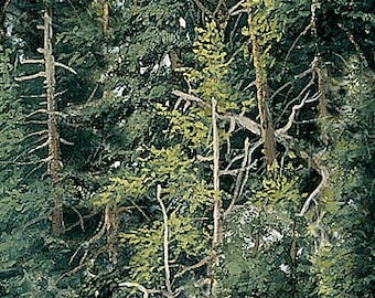 Naturescape Fabric - Trees - Forest - Landscape Fabric - Northcott  21408 76 Green - Priced by the 1/2 yard