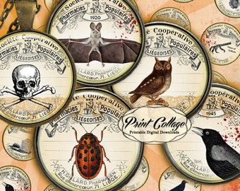 Vintage Apothecary images Digital Printable Sheet Cabochon images 1.5 inch 1inch 18,14mm round images Printable images Instant download C21