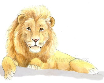Watercolour Lion Fine art Print