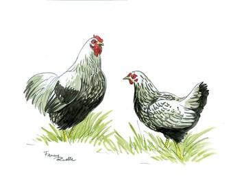 Watercolor Brahma chickens
