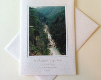 Bear Rock Photo Note Card Blank Inside Inspirational Quote