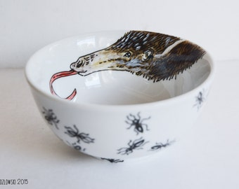 Anteater & Ant Bowl - Hand Painted