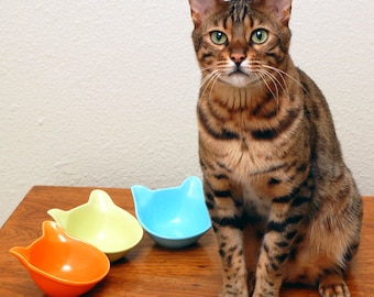 Ceramic Cat Shaped Bowl for Kittens, Cats, Human Accessories (color choices)