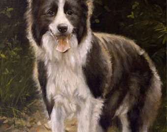 Aceo Dog Print, Border Collie. From an Original Painting by Award Winning Artist JOHN SILVER. Personally signed. BC002AC