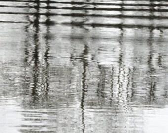 Nature Photography, Water Reflection Print, Beautiful Tree Reflection Photo,Willamette River Wall Art, Oregon, Black & White Home Decor,Fall