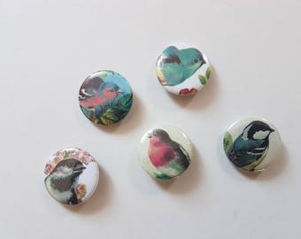 Birds button badge set of 5