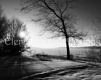 Black and White Photo, Winter Scene,  Instant Download, 16x16, Fine Art Digital Photo, Digital Printable, Photography