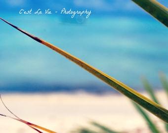"Beach inspired Fine Art Photography 8""x10"" - Blue Bliss"