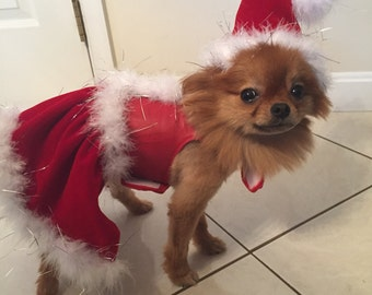 Leather Santa Claus Harness Dress