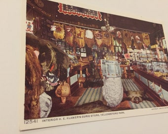 Vintage Yellowstone Park Post Card - 1996 Reprint of painting of HE Klammer's Curio Store (1909)