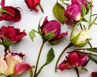Dried Rosebuds, Pink, Red, Yellow, Wedding Decorations, Craft Supply, Dried Flower, Confetti, Table Decorations, Floral, Dried Rosebuds