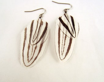 Natural Feather Earrings Flying Zebra
