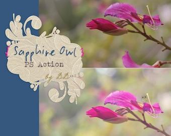 Sapphire Owl  - PS Action - Beautiful, Hazy, Light