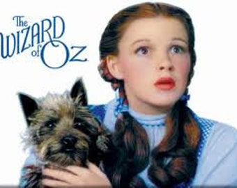 Dorothy and Toto WOZ Cross Stitch Pattern PDF