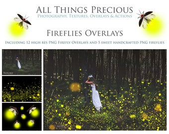 12 High res Fine Art Digital FIREFLIES Overlays and 5 png LIGHTENING BUGS