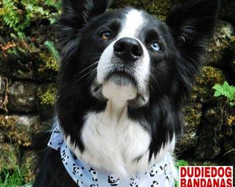 Panda Dog Bandana! Cute Grey/ Black and White Pandas, Tie on. Handmade in the UK by Dudiedog. 100% cotton, Free UK P&P. 7 sizes!