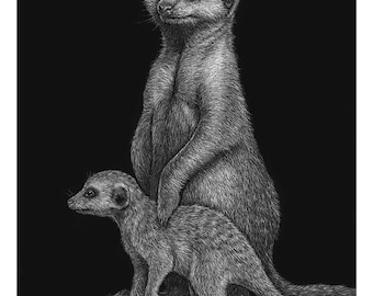 Meerkat art print - scratchboard giclee reproduction - African animals, mother and baby, family art, African wildlife safari, Namibia