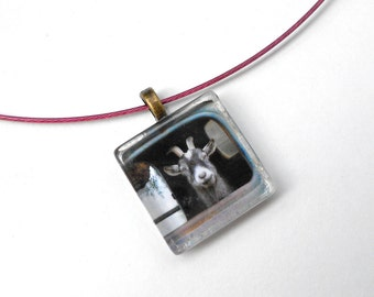 Animal Art Necklace,  Original Goat Photo, Pink Wire Choker necklace