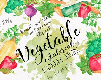 Vegetables Clipart, Watercolor Clipart, Hand-painted Clipart, Vegetable Illustration, Commercial Use Clipart, Tomato Clipart,Parsley, Pepper
