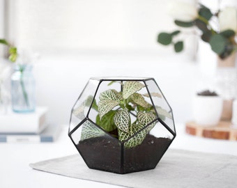 Glass Terrarium geometric container geometric planter indoor planters modern terrarium glass planter indoor planter (S10)