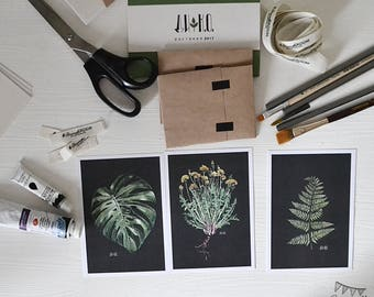 Set of 3 Plants cards. Illustrated Cards. Botanical Cards. Art Postcards. set Botanical Postcards. Watercolor.  Scandinavian style. Nordic