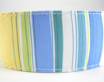Blue Green Yellow extra large hemp dog collar