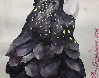 Watercolor bird paint parrot