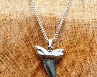 Shark Tiger Tooth Necklace & Pendant Ladies Nature Gift