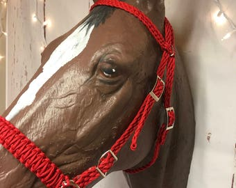 Bitless bridle ... Side pull hackamore with headstall red, horse gift for her, horse, horse lover gift