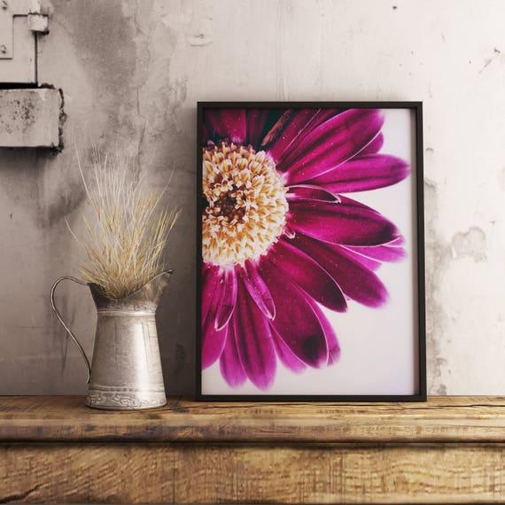 Flower Art Print Based on a Chrysanthemum Flower