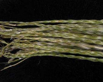 Sweet Grass (1 braid)