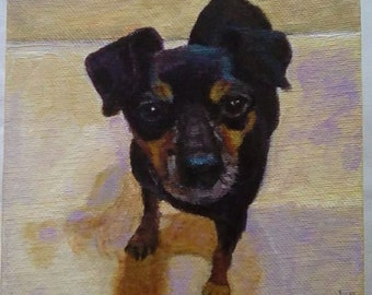 Miniature Pet Portraits Dogs Cats and Other Pets