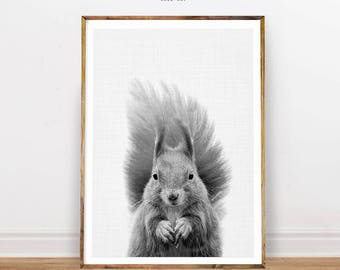 Squirrel Portrait, Nursery Animal Portrait, Squirrel Art, Woodland Print, Woodland Animal Print, Nursery Wall Art, Digital Print, Print