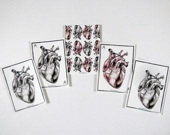Anatomical Heart Alternative Valentines Postcards, Gothic Valentines