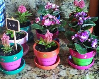 Painted Flower Pots - Herb Planters - Succulent Planters - Colorful Planters - 4 inch Planter