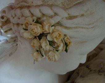 Gorgeous Paper Flowers Buttercream Roses 2 Dozen Lot