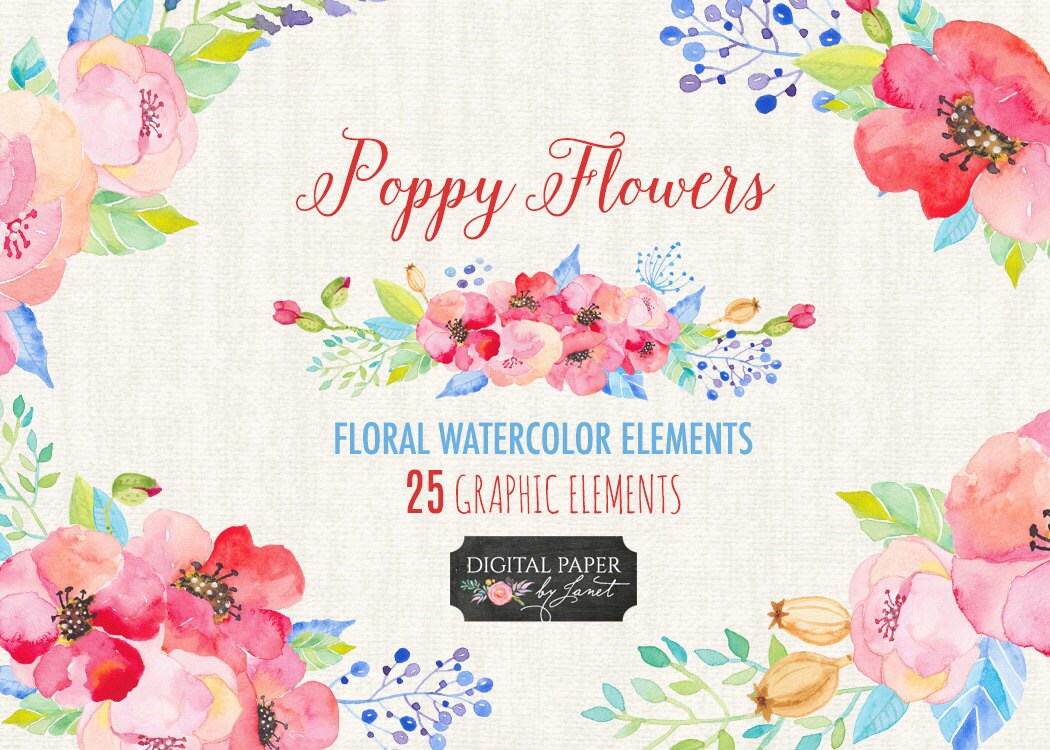 Poppy Flower Floral Watercolor Elements Png File