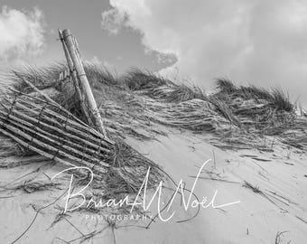 Landscape of Eroding Sand Dune