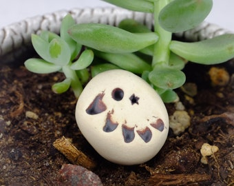 You should see the other guy! Pocket Pal, Garden Monster, Terrarium Decoration, Garden Decoration, Office Decoration, Plant Decoration