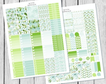 Succulents Planner Sticker Printable / Sticker Printable / Printable Planner Stickers / Weekly Planner Sticker Kit