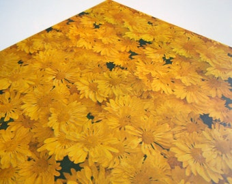 1975 All Any Occasions Wrapping Paper Yellow Gold Daisies Flower Power Gift Wrap