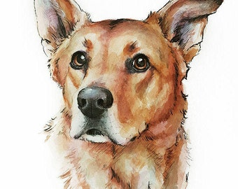 CUSTOM PET PORTRAIT - watercolor and ink illustration or your pet - dog cat custom gift art