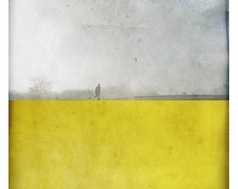 pole jaune