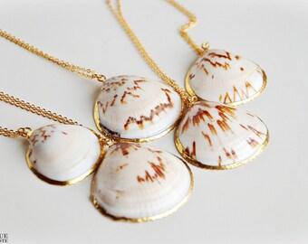 Collier de coquillage en blanc & brun