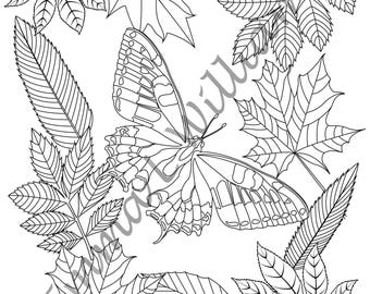 Leaves Collection Adult Colouring Book Page