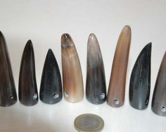 8 lot 6 water buffalo horn tips