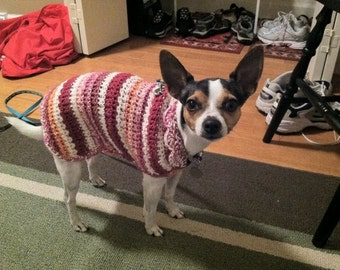 Dog Sweater with Scalloped Collar in Creamsicle Colors -MADE to ORDER